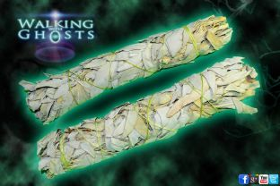 2x Large White Sage Smudging Bundle Wand Sticks Cleansing Smudge Ritual Ghost UK